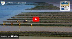 EMODnet : Providing Open Data supporting Aquaculture